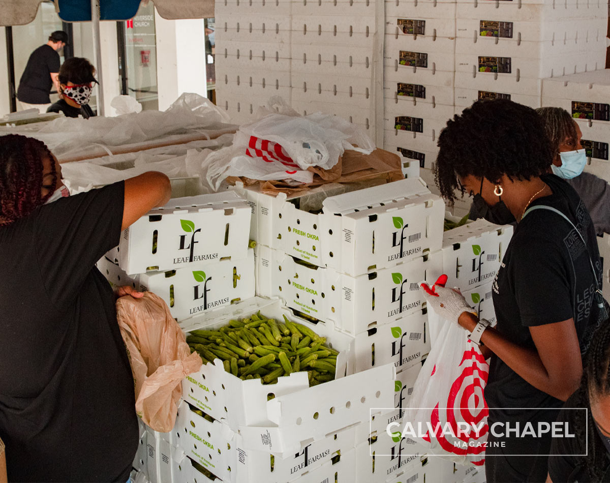 Women packing leaf farm boxes